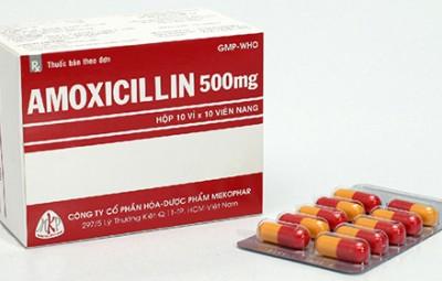 duoc-si-huong-dan-su-dung-amoxicilin