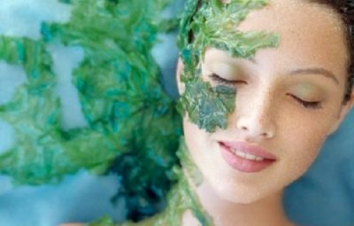 Bạn cũng có thể dùng mặt nạ ngải cứu trị mụn