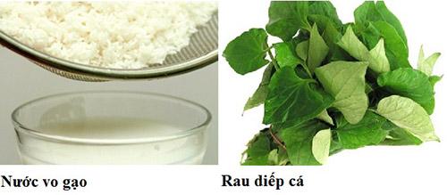 Kết hợp nước vo gạo và rau diếp cá