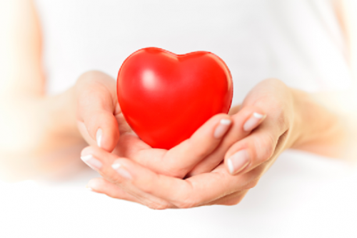 Cách-phòng-tránh-căn-bệnh-tim-mạch-hiểu-quả-trái-tim