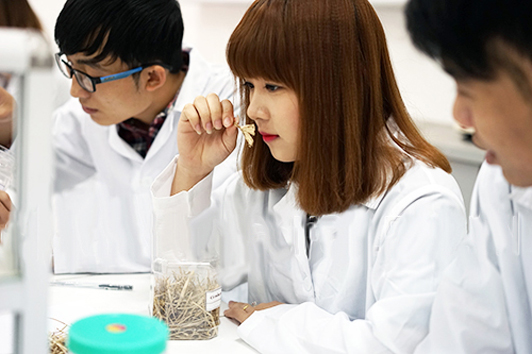 Liên thông Cao đẳng Dược là lựa chọn tối ưu của các thí sinh