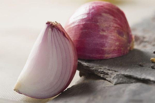 Tổng hợp các loại thực phẩm tăng cường lợi khuẩn cho hệ tiêu hóa