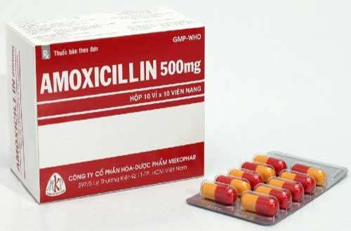 Thuốc Amoxicillin là thuốc gì?