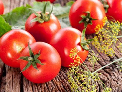 Giảm cân nhờ cà chua