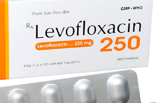 Chuyên gia Dược hướng dẫn sử dụng thuốc Levofloxacin