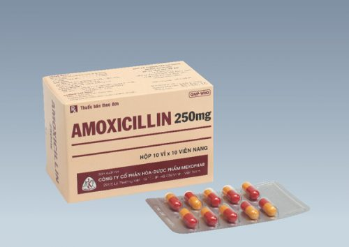 Thông tin về thành phần và tác dụng của thuốc Amoxicillin