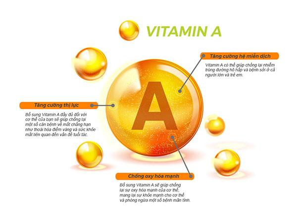 Vitamin A tạo ra những sắc tố trong võng mạc của mắt
